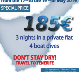 PROMO FOR TWO DIVERS TENERIFE DIVE